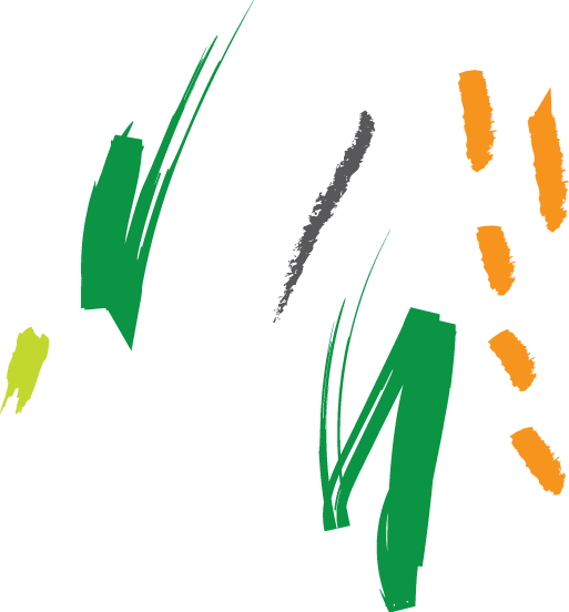 Conseil en entreprise, dans le secteur de l'agriculture et de l'agroalimentaire